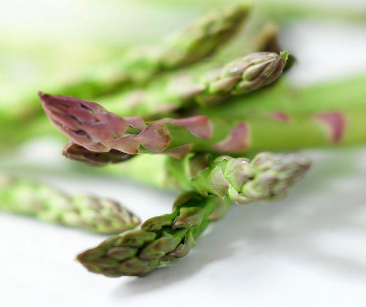 Green Gem Asparagus: Food Photography