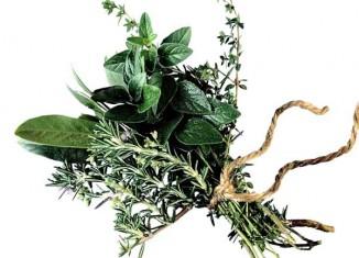 stop hair loss with natural herbs