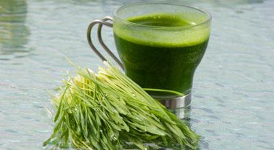 benefits-of-chlorophyll