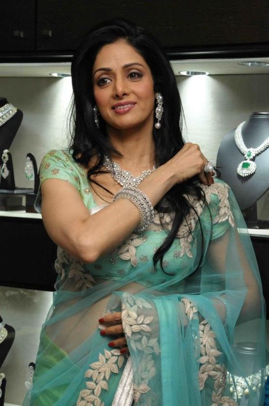 actress-sreedevi-in-designer-sarees